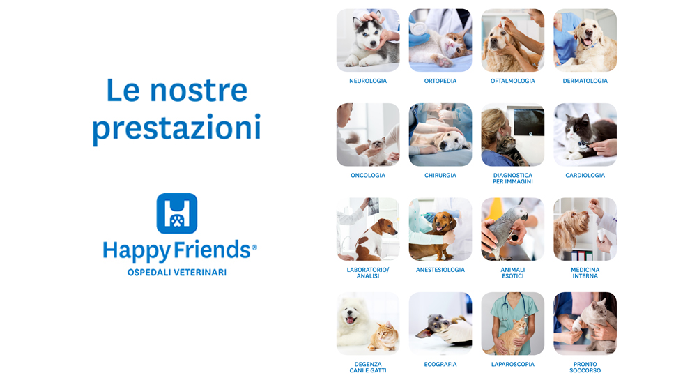 HappyFriends Ospedale Veterinario Partner San Marco Wellness ICLUB